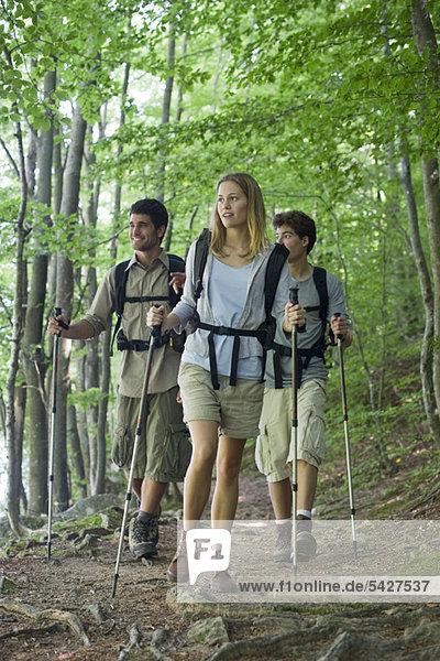 Freunde beim Wandern im Wald