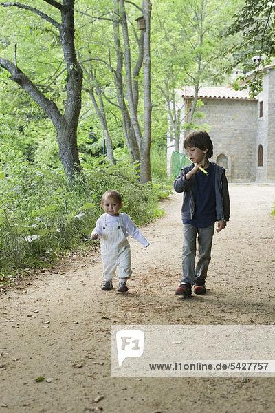 Junge Brüder  die im Wald spazieren gehen