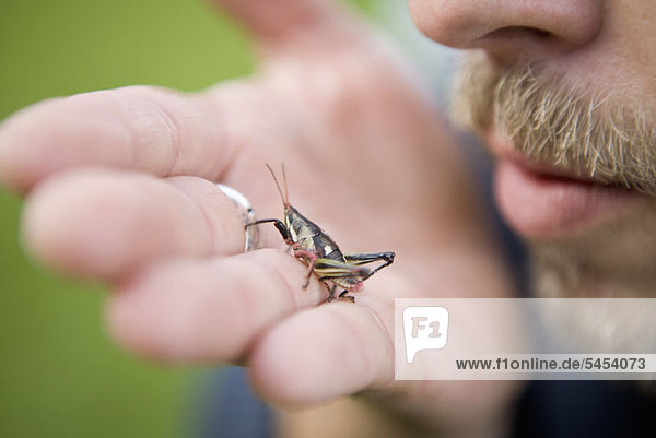 Man holding grasshopper in the palm of his hand
