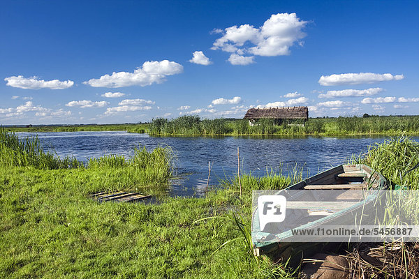 Boot mit Narew-Fluss in der Nähe des Dorfes Waniewo  Narwianski Nationalpark  Polen  Europa