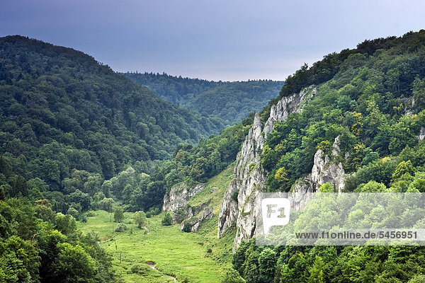 Der Berg Gora Korona  Ojcowski-Nationalpark  Polen  Europa