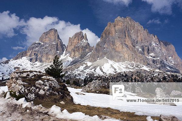 Der Gipfel vom Langkofel oder Sassolungo  vom Sellajoch oder Passo Sella  Dolomiten  Italien  Europa