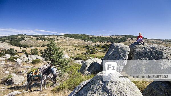 Mädchen mit Esel bei Eselswanderung in den Cevennen  Frankreich  Europa Mädchen mit Esel bei Eselswanderung in den Cevennen, Frankreich, Europa