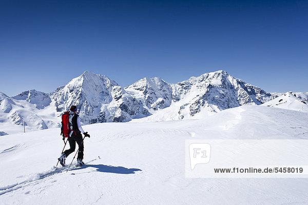 Skitourengeher beim Aufstieg zur hinteren Schöntaufspitze  Sulden im Winter  hinten die Königsspitze  der Ortler und Zebru  Südtirol  Italien  Europa Skitourengeher beim Aufstieg zur hinteren Schöntaufspitze, Sulden im Winter, hinten die Königsspitze, der Ortler und Zebru, Südtirol, Italien, Europa