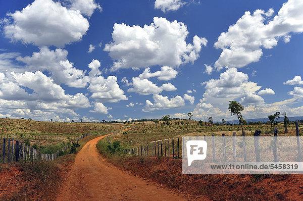 Vast pastures under a cloudy sky  Chapada Diamantina  Bahia  Brazil  South America