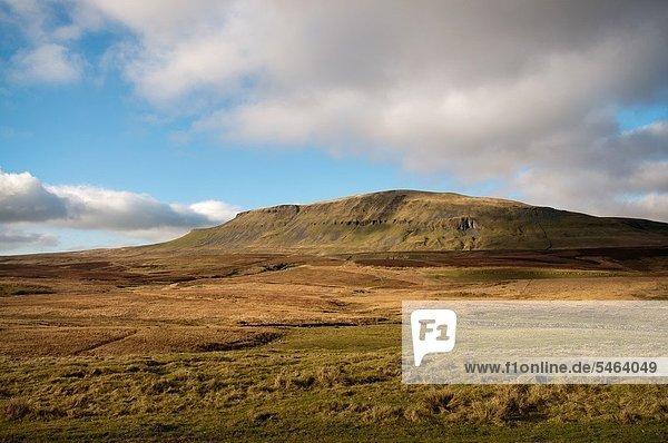 Ländliches Motiv  ländliche Motive  Großbritannien  England  North Yorkshire