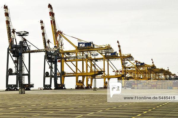 Containerhafen mit Ladekräne  Bremerhaven  Bremen  Deutschland  Europa