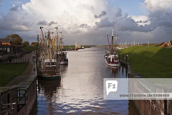 Hafen  Greetsiel  Ostfriesland  Niedersachsen  Deutschland  Europa