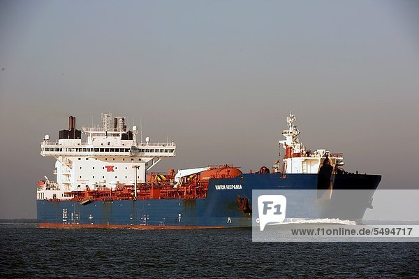 Fischereihafen Fischerhafen reinkommen abladen Ladung Rotterdam Fischereihafen,Fischerhafen,reinkommen,abladen,Ladung,Rotterdam
