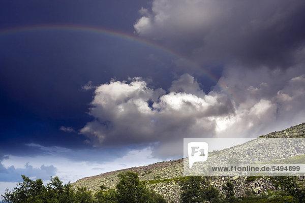 Regenbogen  Nationalpark Fulufjället  Dalarna  Schweden  Skandinavien  Europa