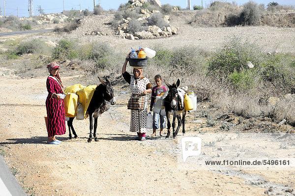 Marokkanische Familie mit Eseln unterwegs bei Essaouira  Marokko  Nordafrika  Afrika