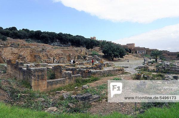 Meriniden-Nekropole Chellah  mit römisch-byzantinischen Ruinen  Marokko  Nordafrika  Afrika