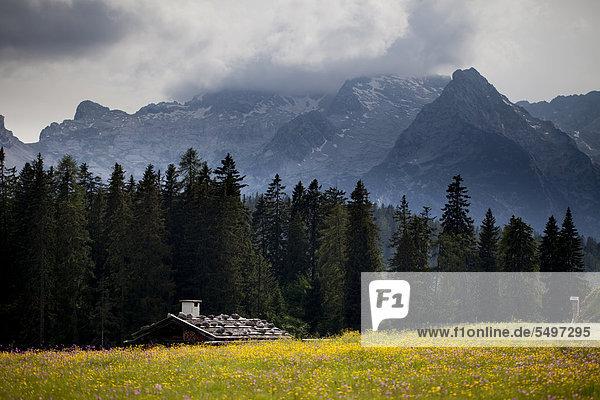 Eine Almhütte auf der Kallbrunnalm im Salzburger Land  hinten die Leoganger Steinberge  Österreich  Europa