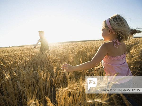Kinder durch hohe Weizenfeld Kinder durch hohe Weizenfeld