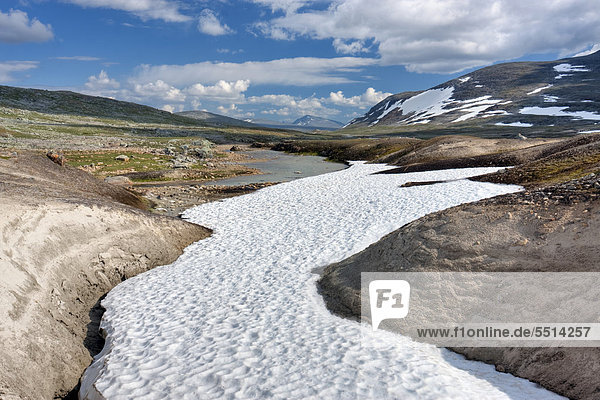Das Tal des Bachs Namnlauselva  Saltfjellet-Svartisen-Nationalpark  Provinz Nordland  Norwegen  Skandinavien  Europa