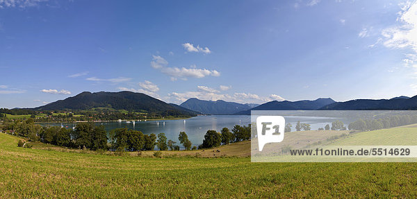 Blick auf den Tegernsee  Gmund  Oberbayern  Bayern  Deutschland  Europa  ÖffentlicherGrund