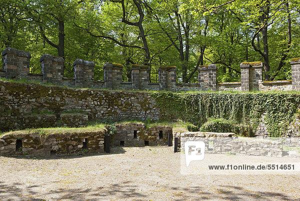 Rekonstruiertes Römerkastell Saalburg  Limes  UNESCO Weltkulturerbe  Taunus  Hessen  Deutschland  Europa