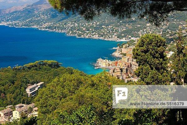hoch oben Europa Ansicht Flachwinkelansicht Winkel Camogli Italien Ligurien Provinz Genua