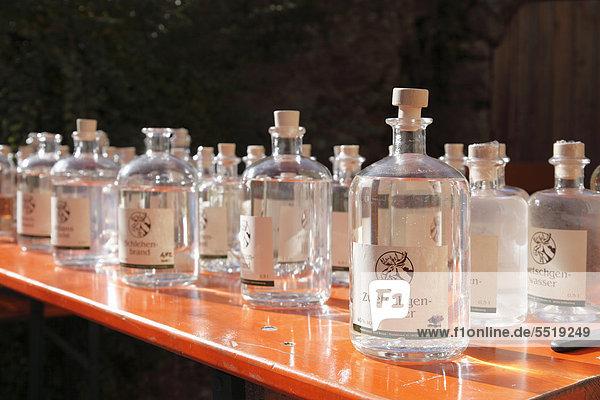 Schnapsflaschen  Zwetschgenwasser  Tag der offenen Brennereien  Gasthof Brennerei Seitz  Thuisbrunn  Gemeinde Gräfenberg  Fränkische Schweiz  Oberfranken  Franken  Bayern  Deutschland  Europa