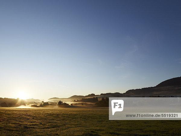 Morgennebel über dem Allgäu  nahe Weitnau  Bayern  Deutschland  Europa