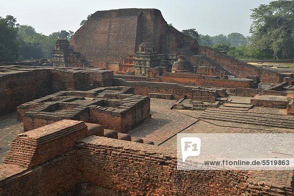 Archaeological site and an important Buddhist pilgrimage destination  ruins of the ancient university of Nalanda  Global Buddhist Congregation 2011  Ragir  Bihar  India  Asia