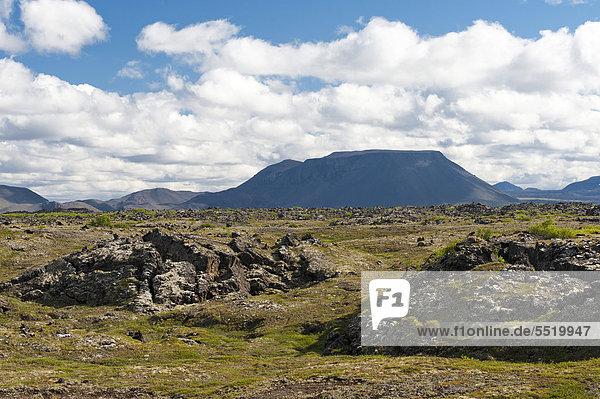 Landschaft am M_vatn  Nordisland  Island  Europa