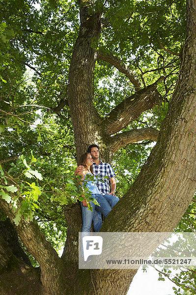 stehend  Zusammenhalt  Baum