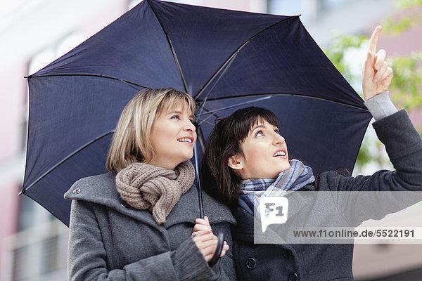 Frau  Regenschirm  Schirm  Straße  unterhalb  Großstadt