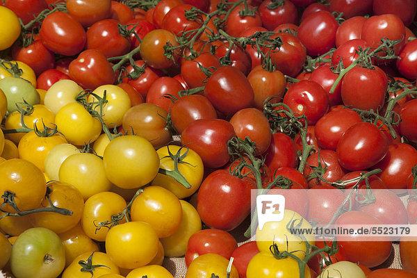 Gelbe und rote Tomaten