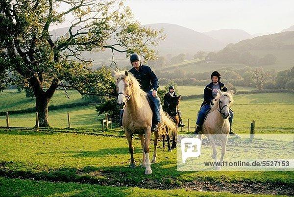 hinter  nahe  Großbritannien  Bauernhof  Hof  Höfe  Tal  reiten - Pferd  trekking