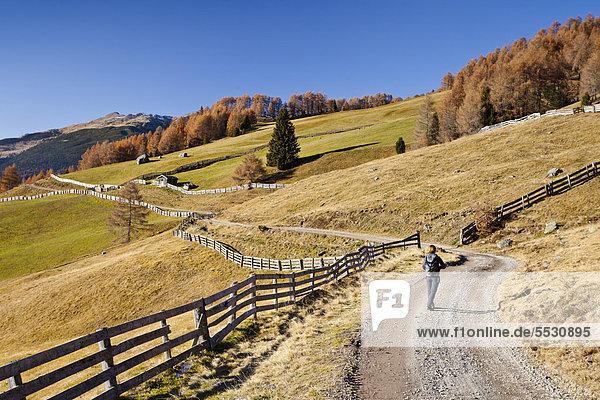 Wanderin beim Abstieg von der Gedrumalm im Gedrumtal oberhalb von Reinswald im Sarntal  Südtirol  Italien  Europa