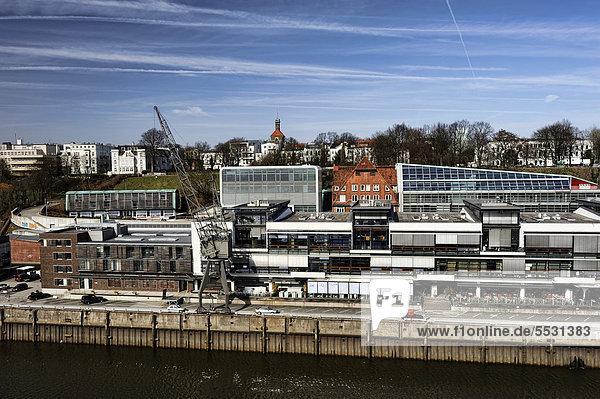 Elbufer in Altona  Hamburg  Deutschland  Europa