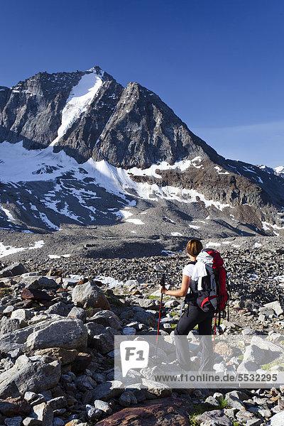 Wanderin beim Aufstieg zur Tschenglser Hochwand oberhalb der Düsseldorfhütte in Sulden  hinten die Vertainspitze  Südtirol  Italien  Europa