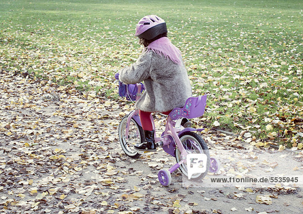 Little girl riding bicycle in autumn landscape  rear view