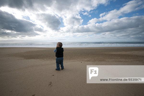 Toddler walking on beach  rear view