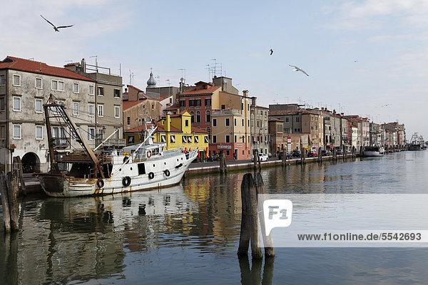 Chioggia  Venedig  UNESCO Weltkulturerbe  Venetien  Italien  Europa