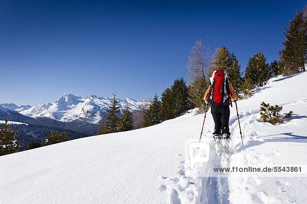 Skitourengeher beim Aufstieg zur Cima Bocche  hinten der Colbricon und die Lagoraigruppe  daneben der Passo Rolle  Dolomiten  Trentino  Italien  Europa Skitourengeher beim Aufstieg zur Cima Bocche, hinten der Colbricon und die Lagoraigruppe, daneben der Passo Rolle, Dolomiten, Trentino, Italien, Europa