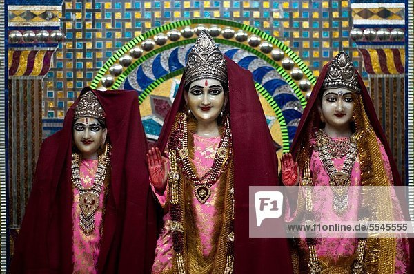 Deities statues  Hindu temple  Chandigarh  India