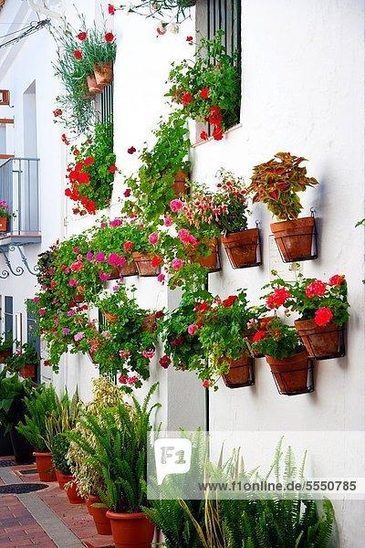 Stadt  Andalusien  Spanien