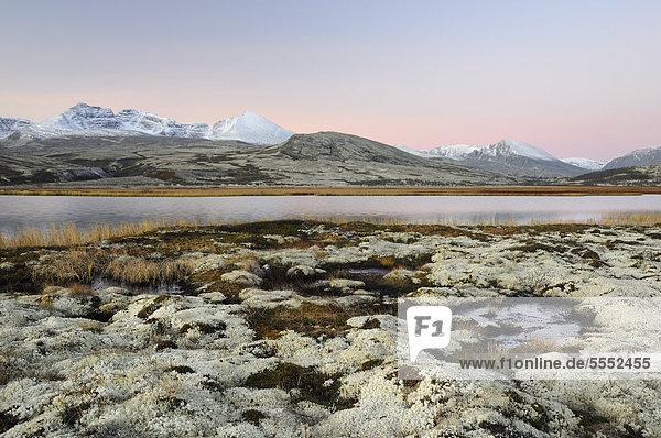 Landschaft nahe der Hütte Doralseter  Rondane Nationalpark  Norwegen  Europa