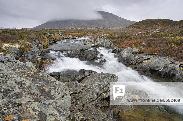 Fluss Stropla im Dovrefjell-Sunndalsfjella-Nationalpark  Norwegen  Europa