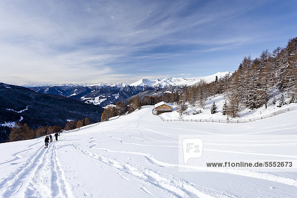 Skitourengeher beim Aufstieg zum Sattele oberhalb von Reinswald  hinten das Sarntal  Südtirol  Italien  Europa
