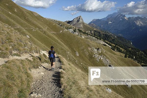 Wanderin auf dem Friedrich-August-Weg mit Blick auf die Marmolata  Dolomiten  Südtirol  Italien  Europa