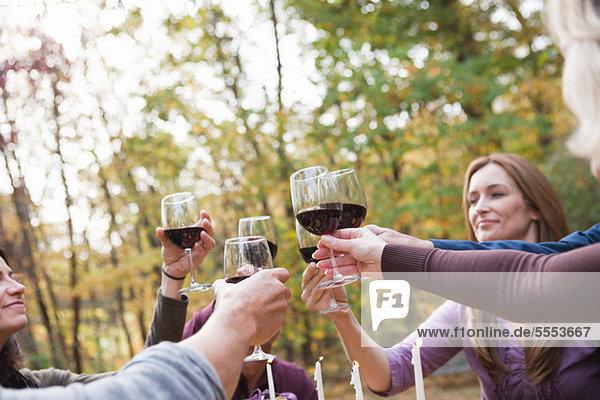 Freunde toasten Gläser im Freien