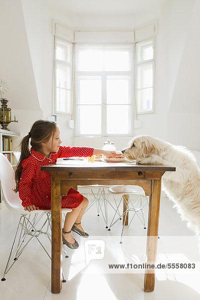 Girl feeding dog at table