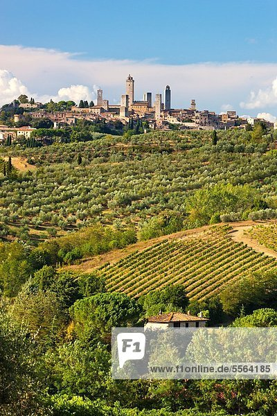 Europa, Italien, San Gimignano, Toskana