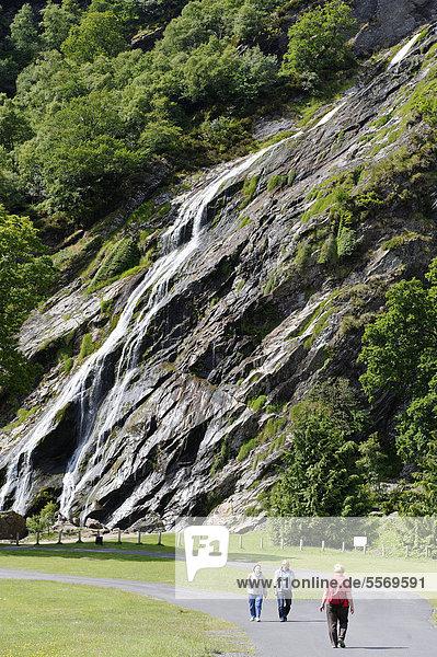 Powerscourt Wasserfall  Enniskerry  Wicklow Mountains  County Wicklow  Irland  Europa