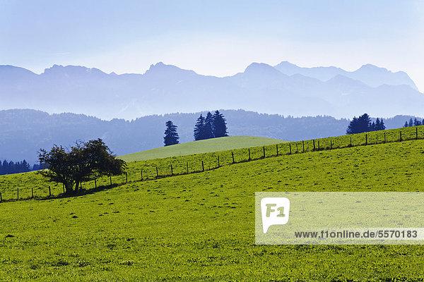 Landschaft im Ostallgäu  Allgäu  Bayern  Deutschland  Europa  ÖffentlicherGrund