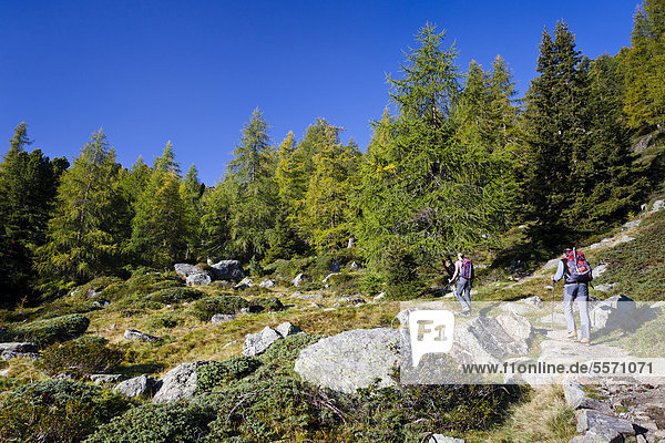 Wanderer beim Aufstieg zur Hinteren Eggenspitze im Ultental oberhalb vom Weißbrunnsee  Südtirol  Italien  Europa Wanderer beim Aufstieg zur Hinteren Eggenspitze im Ultental oberhalb vom Weißbrunnsee, Südtirol, Italien, Europa