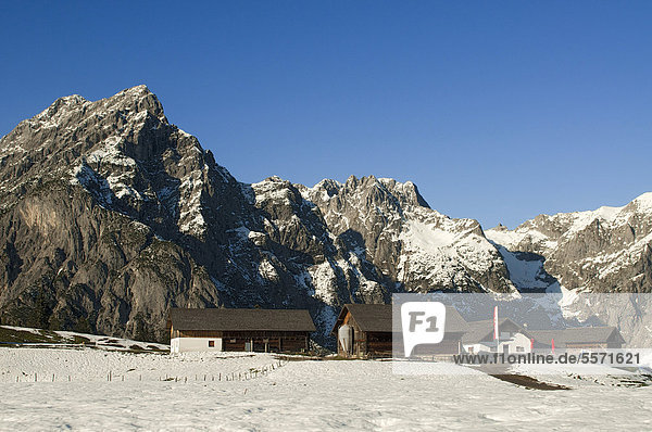 Walder Alm alpine pastures in front of the Karwendel Mountains  Gnadenwald  Tyrol  Austria  Europe